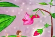 Flor de Bach Impatiens - Sumersalud